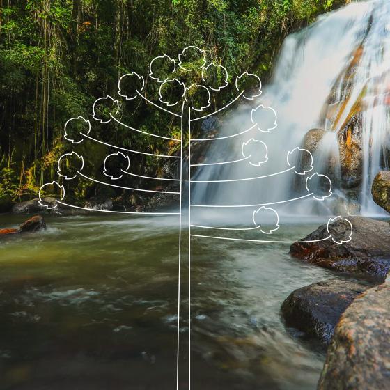 Cachoeira perto de pedras, um desenho de árvore por cima da foto