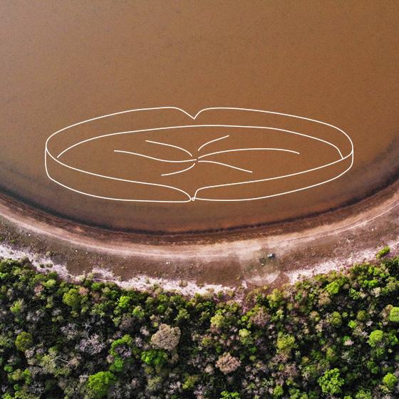Água de um rio, limpa e azul. Por cima da imagem, um desenho de vitória régia.