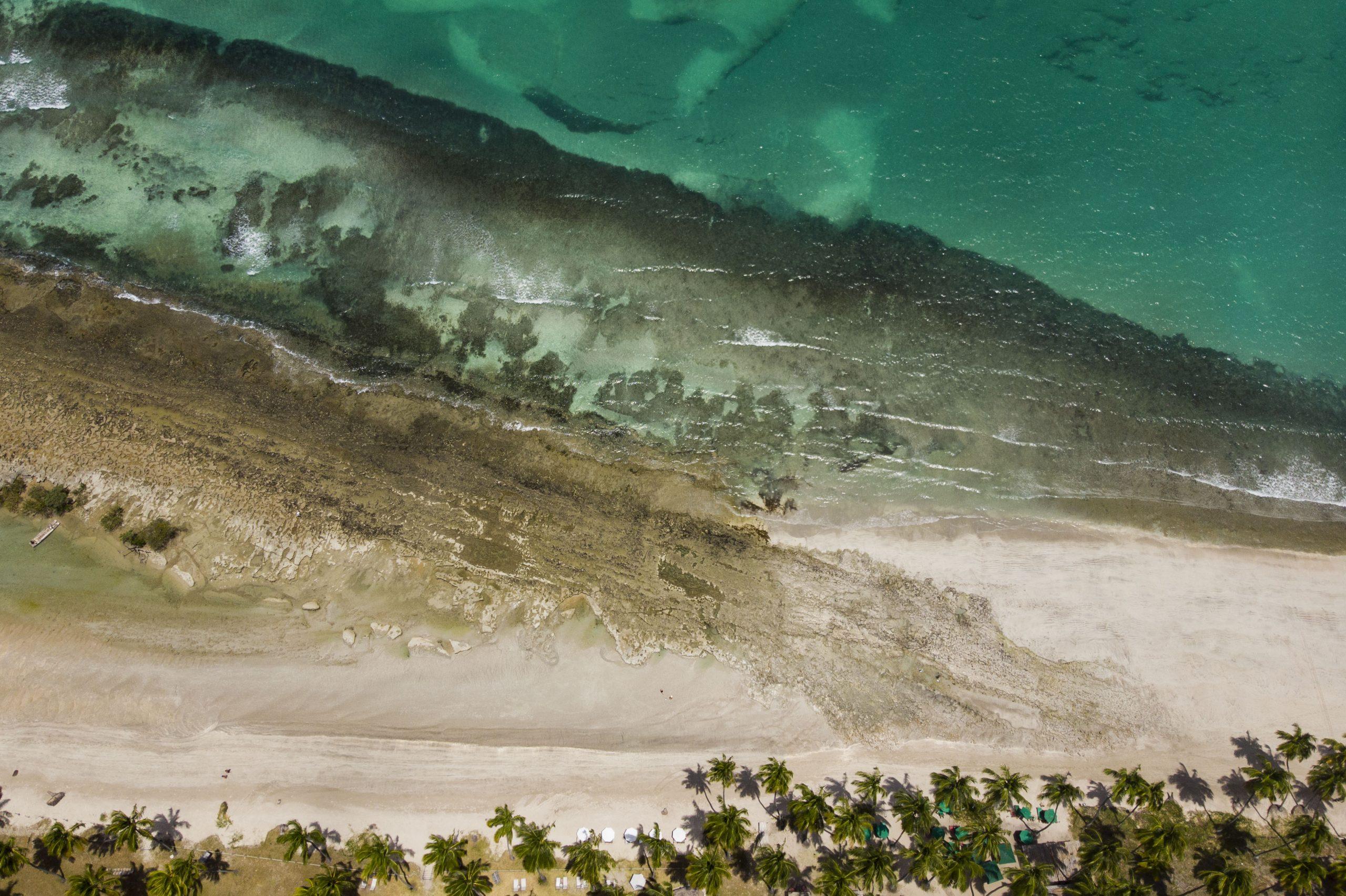 Imagens gerais no mangue e na costa de corais da foz do Rio Formoso, na praia de Carneiros em Tamandaré, PE