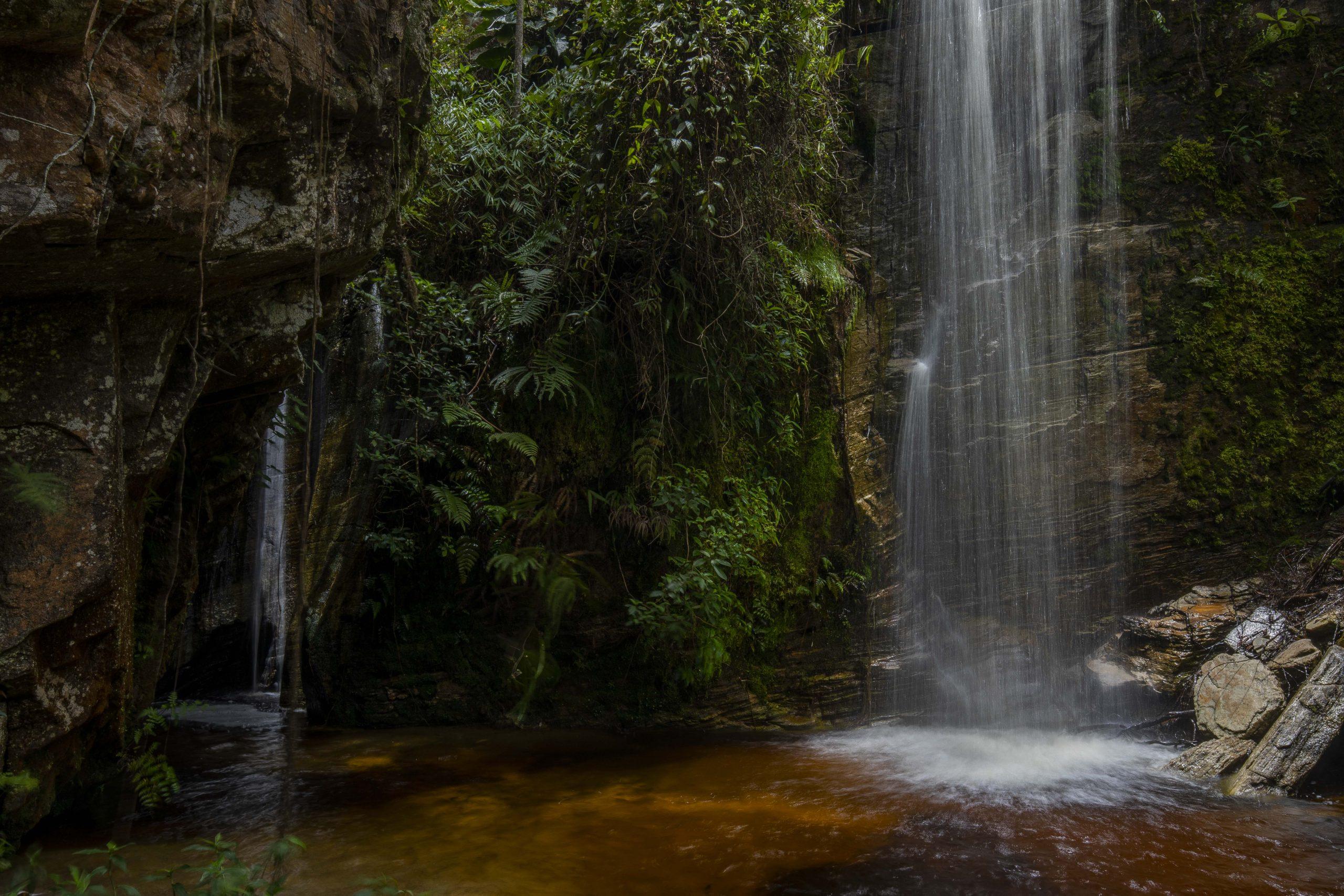Mata Atlântica na região da Comuna do Ibitipoca em Minas Gerais, onde o desenvolvido um projeto de reintrodução de Muriquis do Norte.
